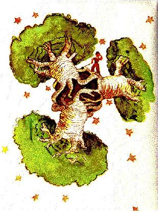 el-principito-baobab.jpg