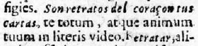 RETRATO-HENRIQUEZ